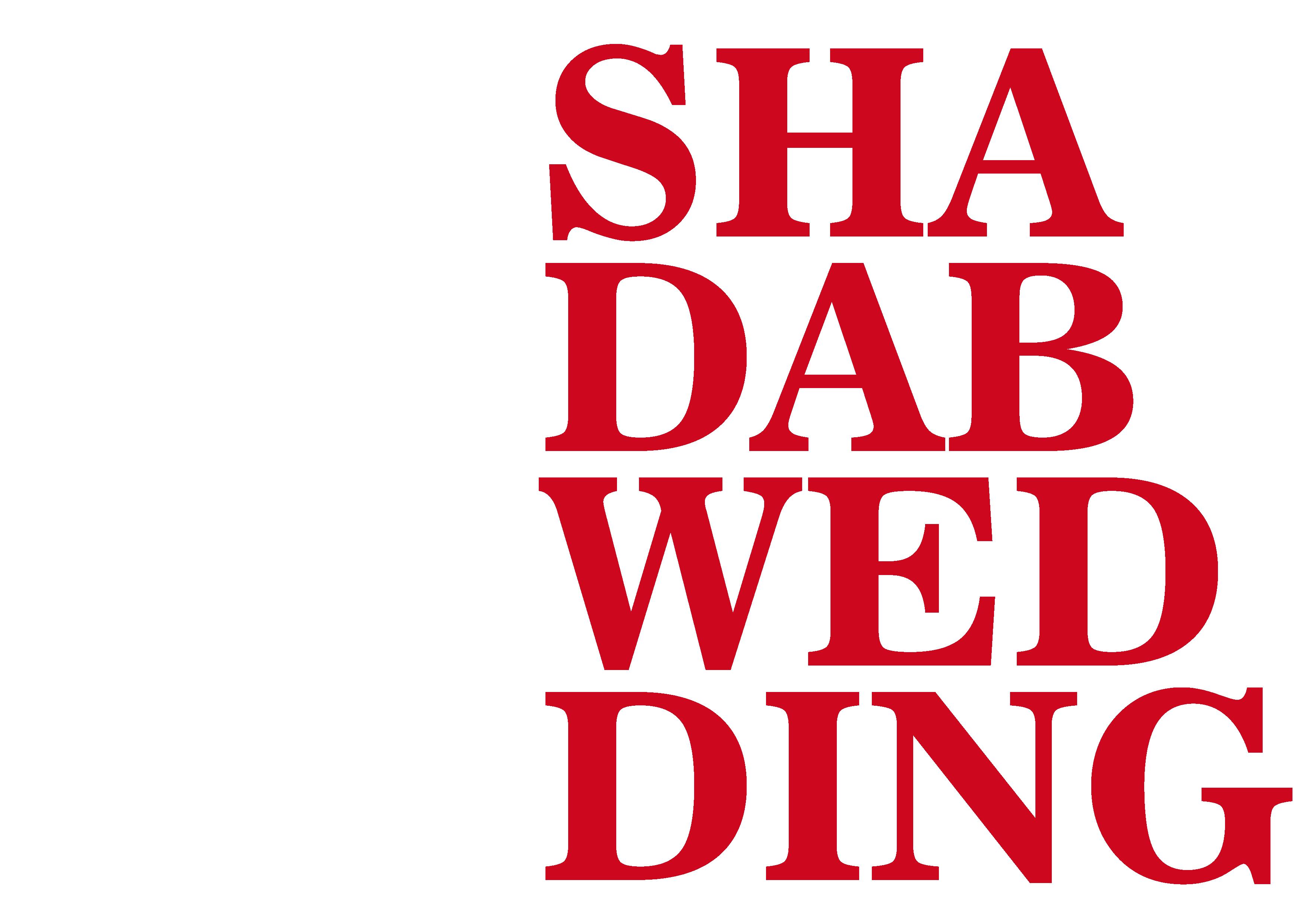Hochzeitsfotograf Shadab